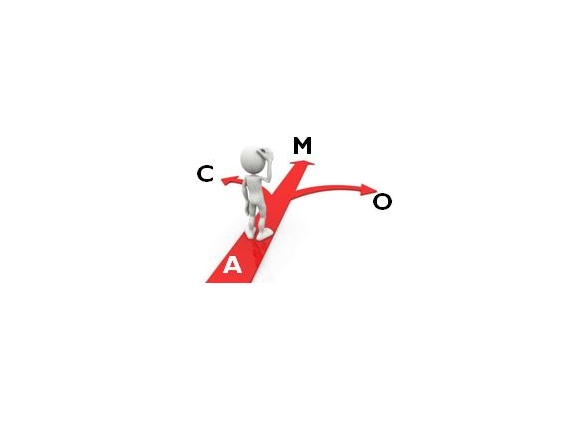 Logo ACMO 564 X 424 200dpi